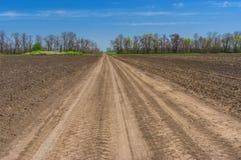 环境美化与在麦子和开花的强奸农业领域之间的一条土路在中央乌克兰 库存图片