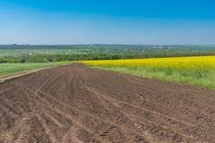 环境美化与在麦子和开花的强奸农业领域之间的肮脏的路在中央乌克兰 库存图片