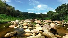环境美化与山、树和一条河前面的 库存照片