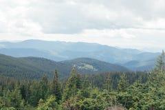 环境美化与山、森林和多云天空 图库摄影