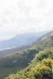 环境美化与山、森林和多云天空 免版税库存照片