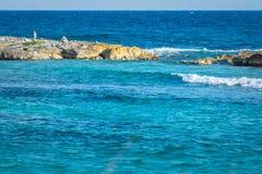 环境美化与平衡的岩石,在一个岩石珊瑚码头的石头 Turquiose蓝色加勒比海水 里维埃拉玛雅人,坎昆,墨西哥 库存图片