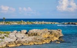 环境美化与平衡的岩石,在一个岩石珊瑚码头的石头 Turquiose蓝色加勒比海水 里维埃拉玛雅人,坎昆,墨西哥 图库摄影
