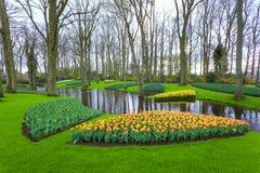 环境美化与开花的美丽的花和水小河在Keukenhof 免版税库存图片