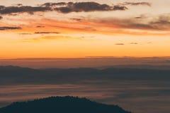 环境美化与有雾的小山和树在冬天在日出 免版税库存照片