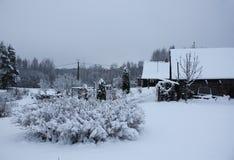 环境美化与树和农村房子在拉脱维亚,东欧 免版税库存图片