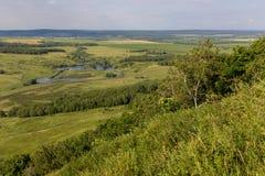 环境美化与母牛,湖,从山Toratau的森林视图 库存图片