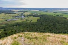 环境美化与母牛,湖,从山Toratau的森林视图 免版税库存照片