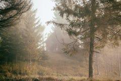 环境美化与秋天森林和一个房子喀尔巴汗,乌克兰,欧洲的雾的 免版税库存照片