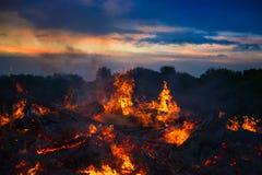 环境美化与篝火、夜和明亮的热的火焰 免版税库存图片
