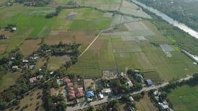 环境美化与米大阳台领域菲律宾,吕宋 股票录像