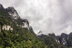 环境美化与背景山树和薄雾和一个湖前面的,在重的雨天以后 恶劣的采光条件 免版税库存照片