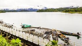 环境美化与背景山树和薄雾和一个湖前面的,在重的雨天以后 恶劣的采光条件 库存照片