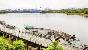 环境美化与背景山树和薄雾和一个湖前面的,在重的雨天以后 库存图片