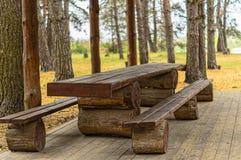 环境美化与野餐木桌和长凳在秋天公园 图库摄影