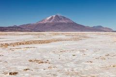 环境美化与Ollague火山在背景中,在玻利维亚和智利之间的边界 免版税图库摄影