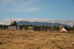 环境美化与Smida爵士节高原Apuseni,罗马尼亚 库存图片