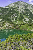 环境美化到Hvoynati峰顶和Eye湖, Pirin山 免版税库存图片