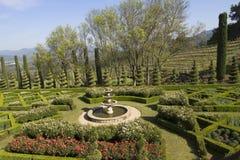 环境美化在一个正式英国庭院里的修剪的花园 免版税库存照片
