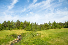 环境美化在有绿草的一个高尔夫球场、森林、树、美丽的蓝天和小河和瀑布 免版税库存照片