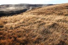 环境美化在瀑布古佛斯瀑布,金黄圈子游览,冰岛 免版税库存图片