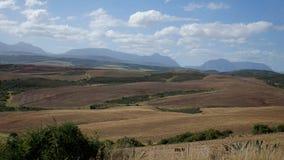 环境美化在西开普省,南非省  免版税库存照片