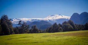 环境美化在Pumalin自然公园巴塔哥尼亚, summe的智利 免版税图库摄影