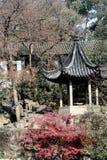 环境美化的中国庭院 免版税库存图片