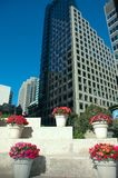 环境美化的摩天大楼 库存照片