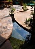 环境美化-热带手段混凝土池塘 免版税库存照片