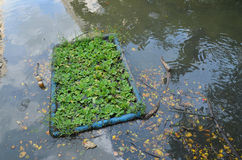 环境问题,废水,工业污水 图库摄影