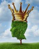 环境领导 免版税库存图片
