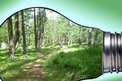 环境,全球性变暖和气候变化概念:为y进行下去的有拷贝空间的一个电灯泡美好的山全景 免版税图库摄影