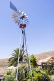 绕环投球法井水棕榈树 库存图片