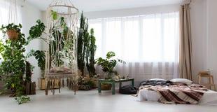 现代单室公寓的内部与许多的植物和在地板上的一张床 免版税库存图片