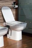 现代卫生间的详细资料 免版税图库摄影