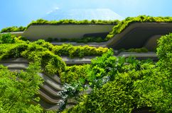 现代建筑学和新加坡垂直的庭院  免版税库存照片