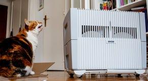 现代文塔空气润湿器和净化器在一个在客厅 免版税库存照片