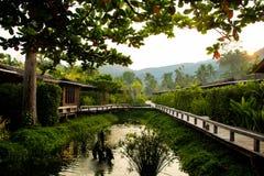 现代木房子在有一个逗人喜爱的小的池塘的一个庭院里 Sunris 免版税库存照片