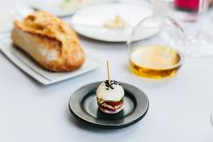 现代法国开胃菜:微型汉堡包包括白色小圆面包,猪肉,切了黄瓜、蕃茄和raddish顶部用黑芝麻 图库摄影
