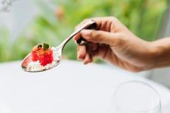 现代法国食物:切成小方块的西瓜用白色易碎乳酪在生来有福担当了开胃菜 免版税库存图片