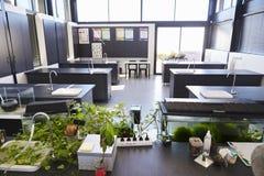 现代科学教室在一所小学 库存图片