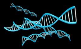 现代脱氧核糖核酸结构3D翻译 库存照片