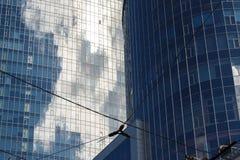 现代蓝色办公室摩天大楼底视图企业distri的 免版税库存照片