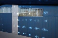 现代蓝色的门面的墙壁上色了房子 免版税库存照片