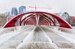 现代被盖的步行桥在一个结冰的冬日 库存图片