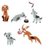 现代,五颜六色的传染媒介套狗 免版税库存照片