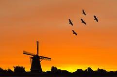 现出轮廓一台荷兰语风车和起重机鸟 免版税库存图片