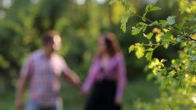 现出轮廓在走在夏天公园的爱的夫妇 股票录像