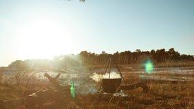 现出轮廓在露营地远足者的被点燃的营火远足者止步不前煮沸努力去做烟阳光在日落剪影在水壶的水 股票视频